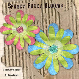Corina_spunkyfunkyblooms_preview